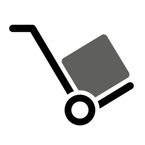 Spezialtransport (Tresor bis 165 kg) bis zum Verwendungsort + Verankerung