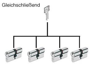 Profil-Doppel Zylinder gleichschileßend